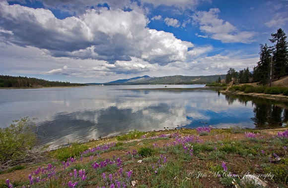Big Bear Lake in spring